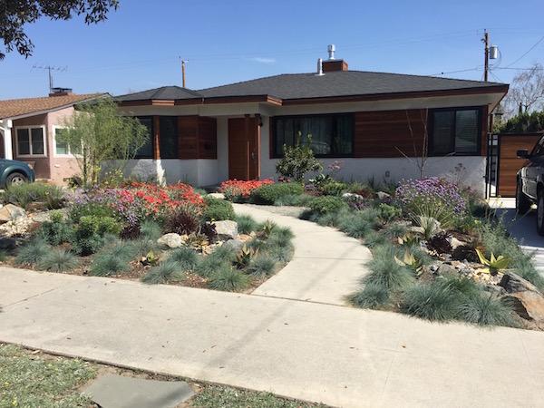 Desert Rock Garden Resized