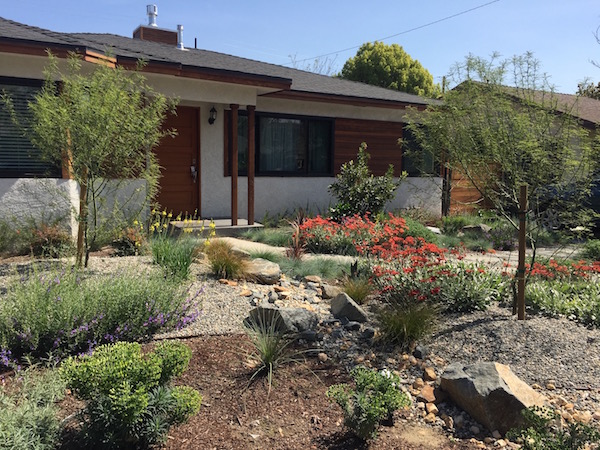 Desert Rock Garden Resized 8