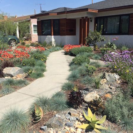 Desert Rock Garden Resized 7